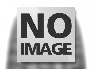 MICHELIN AGILIS 101 205/75 R16C 113Q